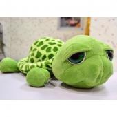 NICI—大眼龟