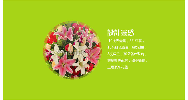 圣诞节感恩节元旦教师节其它节日 花束材料:        10枝天堂鸟