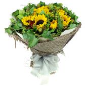 绵绵情谊 携带一束鲜花来到您的身旁
