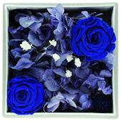 保鲜花—蓝心 扬起情不自禁的情