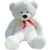 白色泰迪熊
