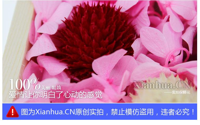 保鲜花——红粉佳人感受最美的风景