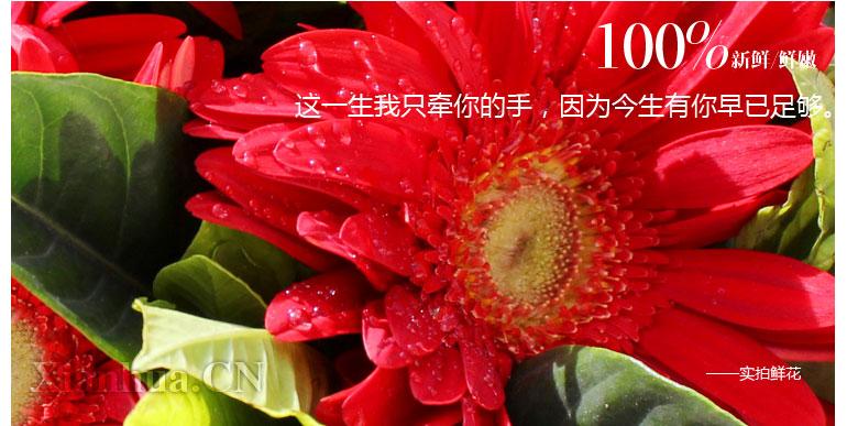 有货,全国配送 (可配送至全国6000城市,本站在全国共设有26个分公司:北京、上海、深圳、广州、成都、武汉、西安、天津、杭州、昆明、南京、济南、大连、沈阳、青岛、重庆、哈尔滨、长春、合肥、长沙、东莞、宁波、福州、苏州等城市最快1小时送达,市区免运费) -->