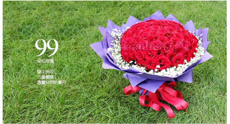 紫色皱纹纸圆形包装,红色蝴蝶结扎束(高:40cm*宽:50cm) 鲜花朵数: 99