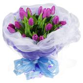 紫色迷情 爱不释手