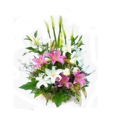 阿布扎比沙The ultimate lily arrangement