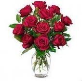 日本12 Red roses in Vase。