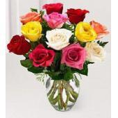 彩色玫瑰组合