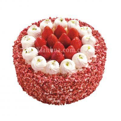 米旗-红莓探戈