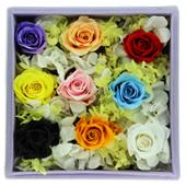 保鲜花—彩虹 为你而美丽