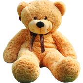 抱抱熊 抱着的一种温暖感觉