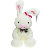 猪兔子 我在等你回家