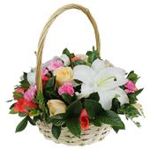 真诚祝福 所有的美丽都源于真挚与坦诚